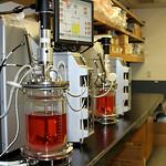 Biopharmaceutical Advancement Facility